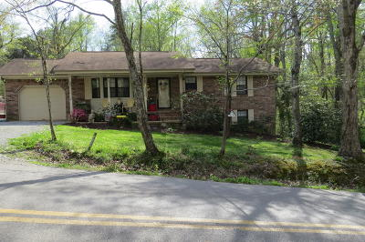 Lookout Mountain Single Family Home For Sale: 2599 Mount Olive Rd