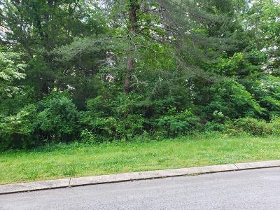 Residential Lots & Land For Sale: Big Cedar Dr #104
