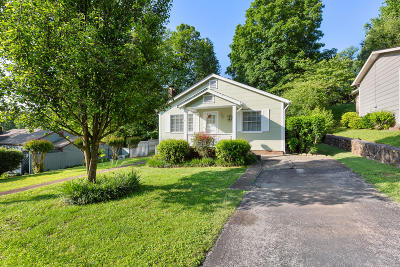 Chattanooga Single Family Home For Sale: 114 Lavonia Ave