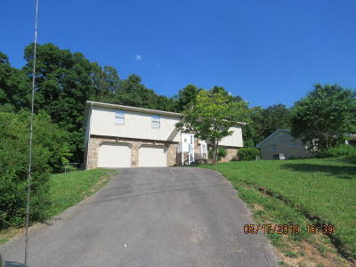 Ringgold Single Family Home Contingent: 256 Townsend Cir