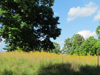 Marion Residential Lots & Land For Sale
