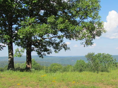 Marion Residential Lots & Land For Sale: 8 Tranquil Acres Rd