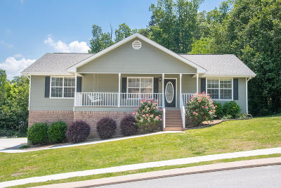 Soddy Daisy Single Family Home For Sale: 9713 Autumn View Cir