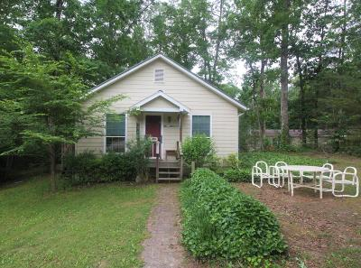 Rhea County Single Family Home For Sale: 140 Parkway Dr