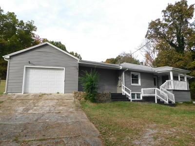Chickamauga Single Family Home For Sale: 548 Harp Switch Rd