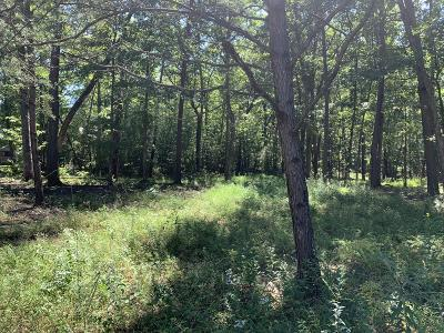 Residential Lots & Land For Sale: 251 Coyote Trail