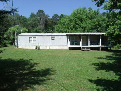 Marion County Single Family Home For Sale: 246 N End Circle