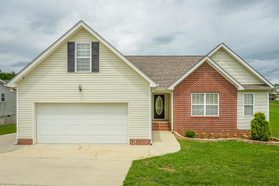 Ringgold Single Family Home For Sale: 87 Gladstone Dr