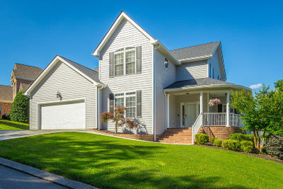 Ringgold Single Family Home For Sale: 497 Blue Jay Pkwy