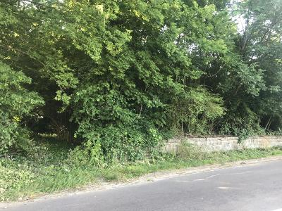 Chattanooga Residential Lots & Land For Sale: Dodson Ave