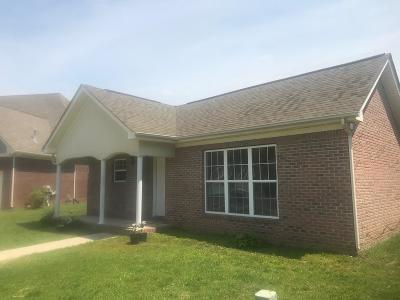 Chattanooga Single Family Home For Sale: 2088 Igou Crossing Dr