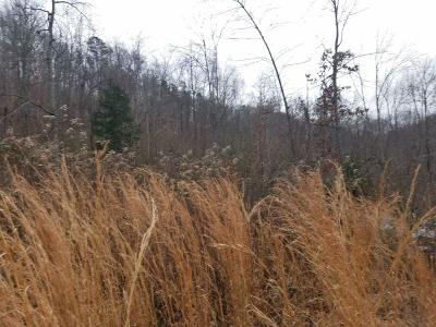 Residential Lots & Land For Sale: 2604 Lower East Valley Rd