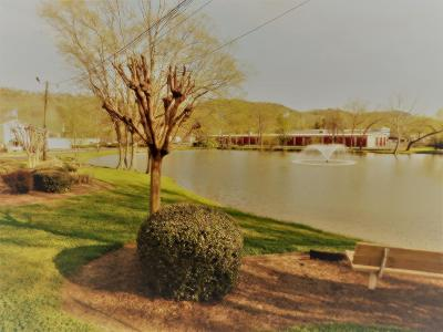 Chattanooga TN Condo For Sale: $75,000