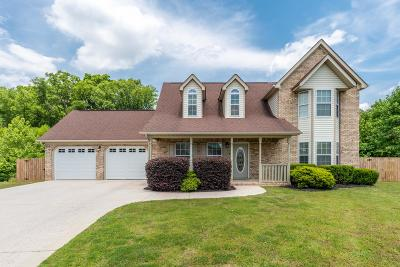 Ringgold Single Family Home For Sale: 420 Creeks Jewell Dr