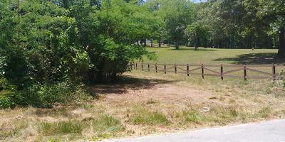 Residential Lots & Land For Sale: 1100 Peters Rd