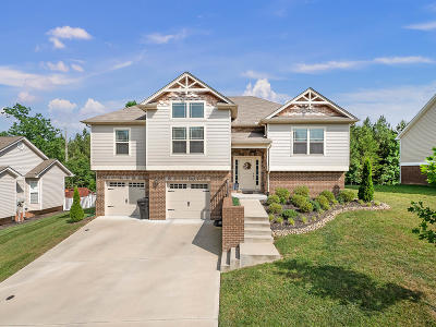 Soddy Daisy Single Family Home Contingent: 579 Hatch Tr #39