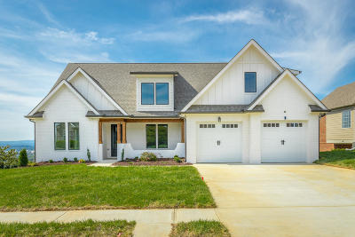 Chattanooga Single Family Home For Sale: 4079 Brock Rd