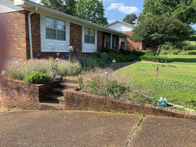 Ringgold Single Family Home For Sale: 129 Lovella Dr