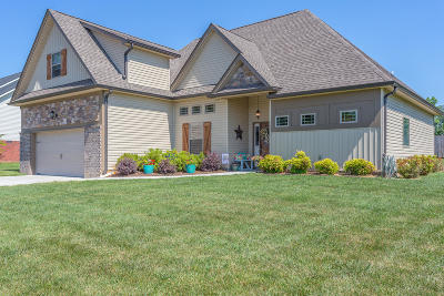 Chickamauga Single Family Home For Sale: 136 Sycamore Dr