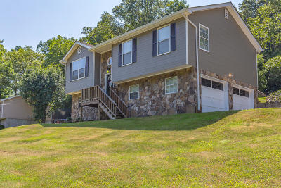 Ringgold Single Family Home For Sale: 1045 Ross Hollow Rd