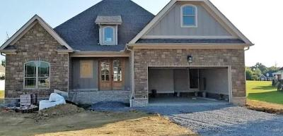 Ooltewah Single Family Home For Sale: 8520 Blanche Rd
