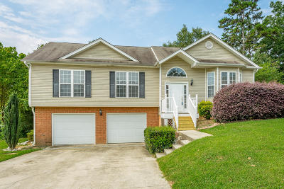Ooltewah Single Family Home For Sale: 7117 British Rd