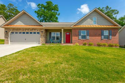 Ringgold Single Family Home Contingent: 286 Peachtree Cir