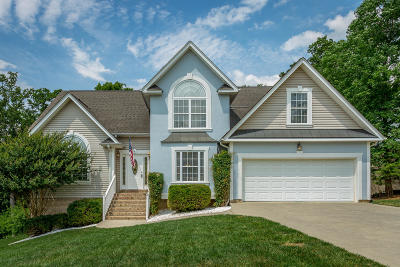Ringgold Single Family Home Contingent: 109 Carriage Dr