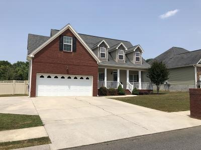 East Brainerd Single Family Home For Sale: 8412 Stormy Hollow Dr