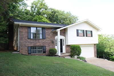 Hixson Single Family Home For Sale: 305 Stonewood Dr
