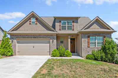 Chattanooga Single Family Home For Sale: 7933 Chianti Way