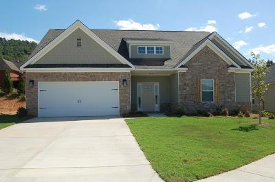 Ooltewah Single Family Home For Sale: 9814 Haven Port Ln #20