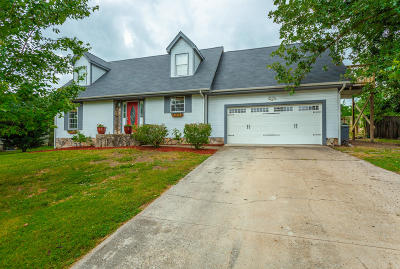 Ringgold Single Family Home For Sale: 538 Misty Ridge Ln