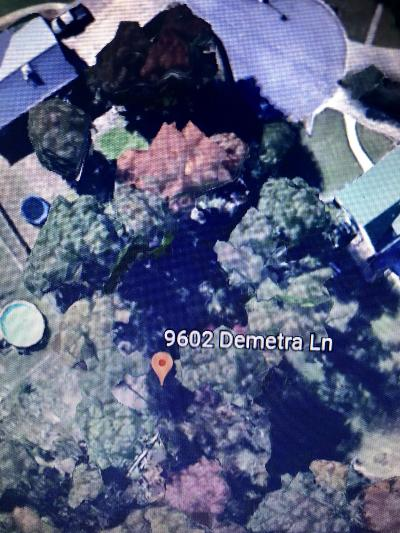 Residential Lots & Land For Sale: 9602 Demetra Ln