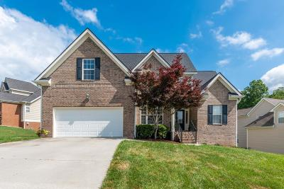 Ooltewah Single Family Home For Sale: 5850 Caney Ridge Cir