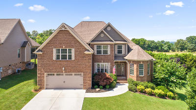 Ooltewah Single Family Home For Sale: 8786 McKenzie Farm Dr