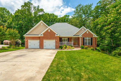 Ringgold Single Family Home For Sale: 57 Wild Goose Cove