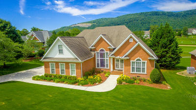 Chattanooga TN Single Family Home For Sale: $529,900
