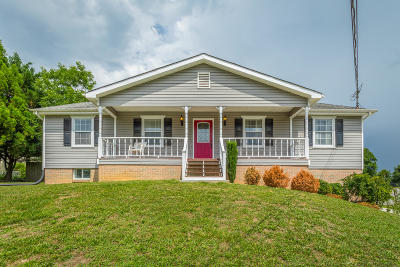 Ringgold Single Family Home For Sale: 126 Misty Ridge Ln