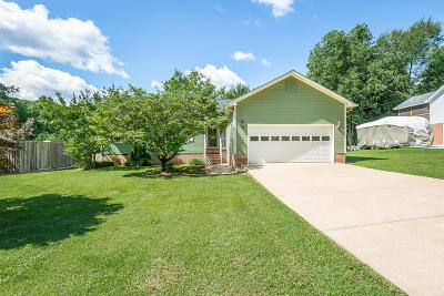 Chattanooga Single Family Home For Sale: 608 Courtney Ln