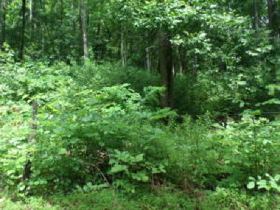 Marion Residential Lots & Land For Sale: Hwy 108 Highway 108