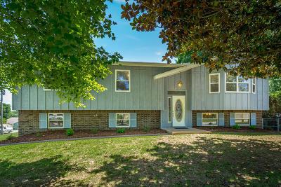 Hixson Single Family Home For Sale: 618 Danbridge Dr