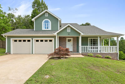 Ringgold Single Family Home Contingent: 70 Castleview Dr