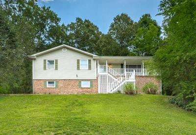 Single Family Home For Sale: 9778 Hamby Rd
