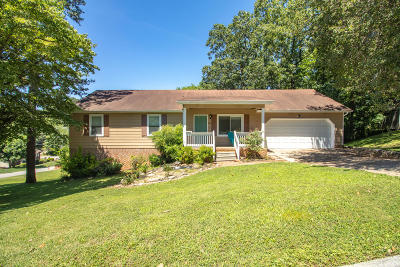 Hixson Single Family Home For Sale: 705 Ashley Forest Dr