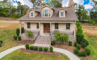 Ooltewah Single Family Home For Sale: 9253 Skyfall Dr #Lot 11