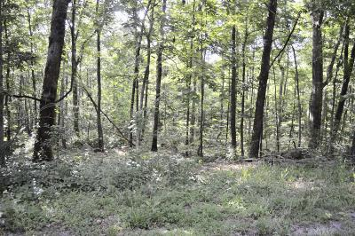 Rising Fawn Residential Lots & Land For Sale: Lot 7 Hwy 157 & Lookout Dr Dr #7