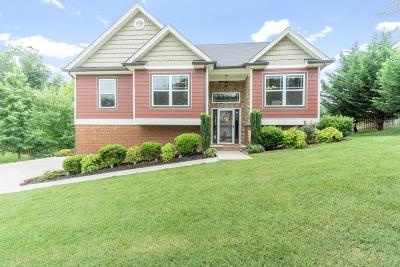 Ooltewah Single Family Home For Sale: 6236 Micasa Ln