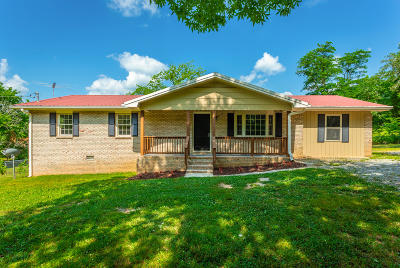 Rising Fawn Single Family Home For Sale: 510 Byrds Chapel Ln