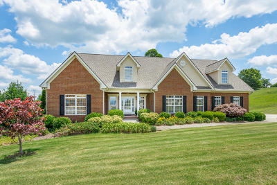 Ringgold Single Family Home For Sale: 133 The Pointe Dr